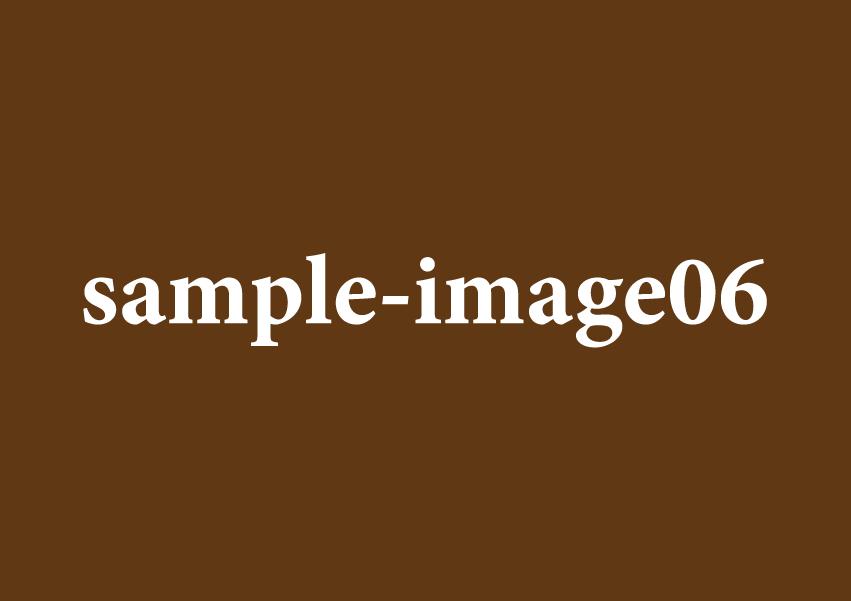横画像サンプル用のイメージ06